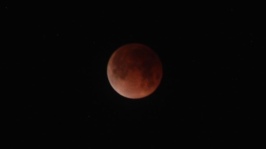 The Super Blue Blood Moon captured at 5:42 A.M. by Makenna Wheeler.