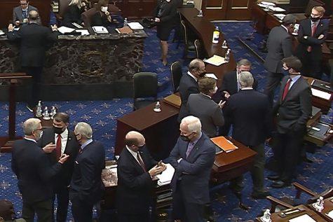 The Second Impeachment of Donald Trump